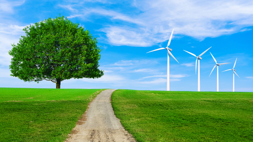 4 More Reasons Why Renewable Energy Wins